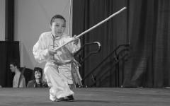 Kung-Fu Armes (Gunshu) MAMC83