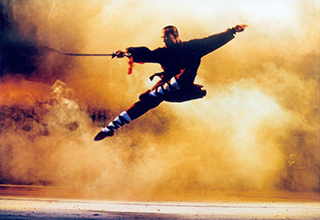 Kung fu wushu toulon la maison des arts martiaux chinois for Les arts martiaux chinois
