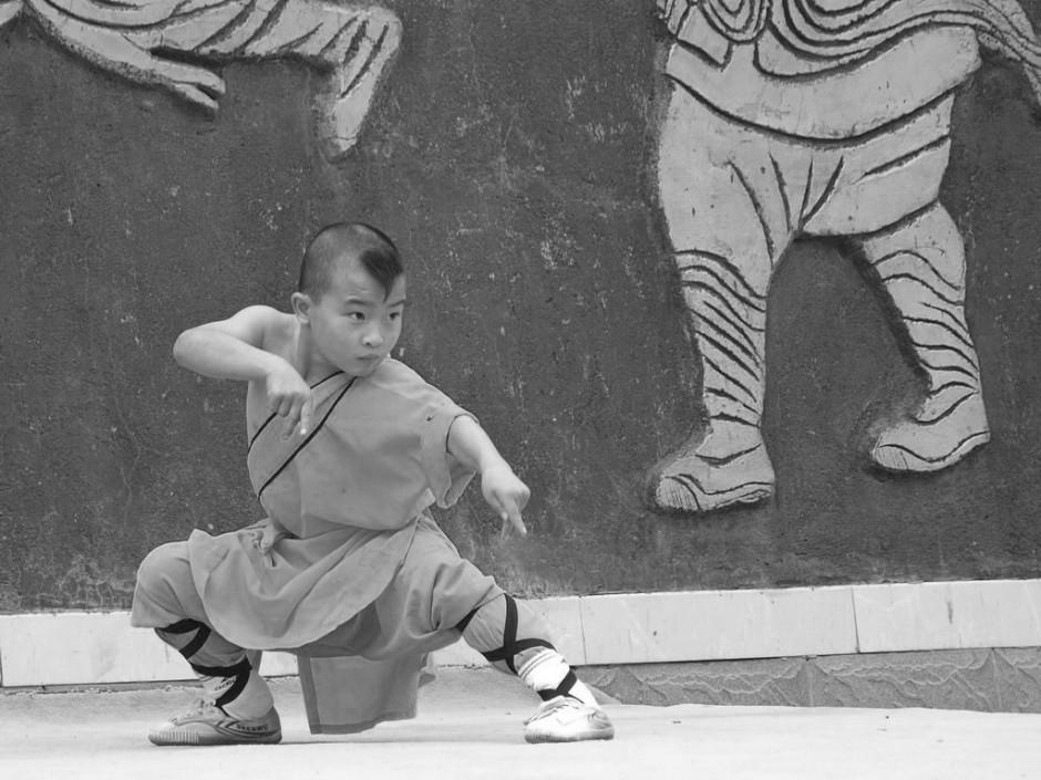 Stage d'été 2015 : Enfants Shaolin MAMC83