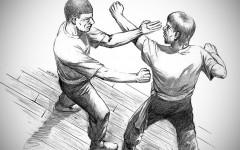 Wing Chun MAMC83